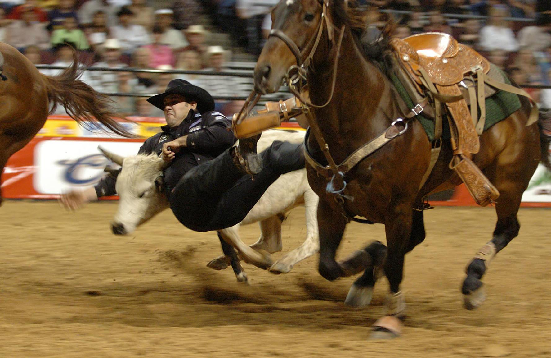 national finals rodeo nfr known popularly as the super bowl of rodeo