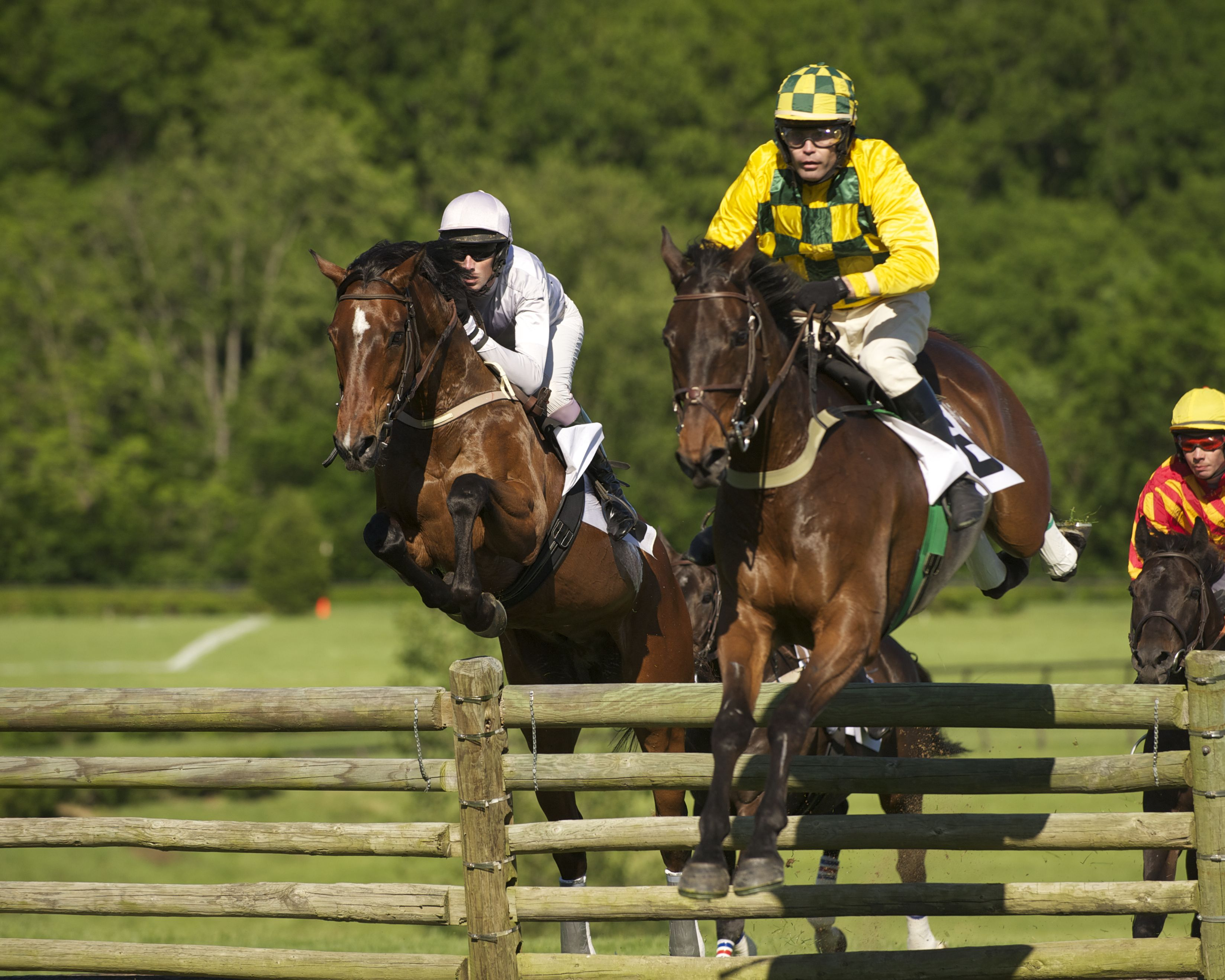 The iroquois steeplechase marks 70 years as nashville s for Steeple chase