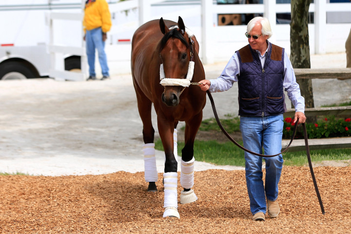 BALTIMORE, MD - MAY 13:  Trainer Bob Baffert walks Kentucky Derby winner American Pharoah to the barn after arriving in preparation for the 140th Preakness Stakes at Pimlico Race Course on May 13, 2015 in Baltimore, Maryland.  (Photo by Rob Carr/Getty Images)
